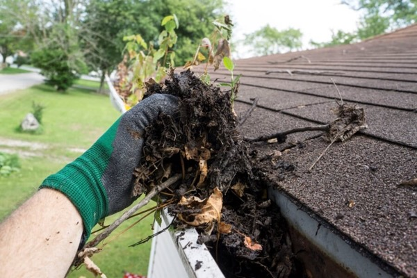 Gutter Cleaning Handyman Service